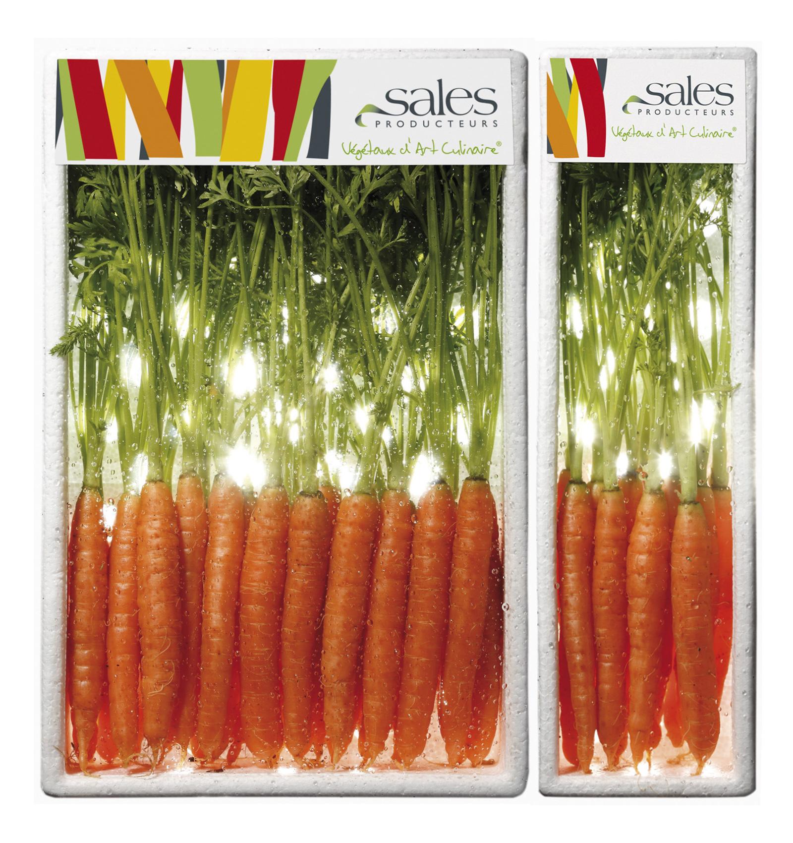Mini Zanahoria Maison Sales Vegetaux D Art Culinaire Mini Legumes France La zanahoria es una verdura dura, bianual y de clima frío, que crece por la raíz gruesa que produce en. mini zanahoria maison sales